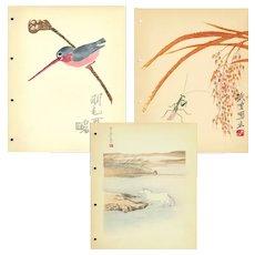 Set of three,Vintage,Mid Century,Chinese,Woodcut Print,Illustrations,Landscape and birds, Pao-Dsai