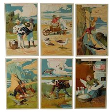Advertisement cards,set of six trade cards,Collectors item,Birds,people,