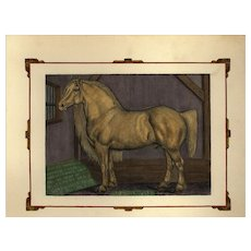 Authentic,Original,Hand colored Print,Horse,Natural history,Farm animal