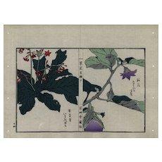 19th Century Japanese Antique Original Hand Colored woodblock botanical print Meiji 38 period Decorative art