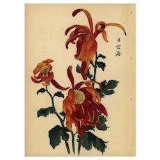19 century KORIN ukiyo-e Japanese woodblock original antique print of Chrysanthemum Meiji Period