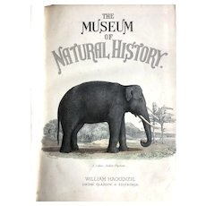 19th Century set of two complete volumes of The Museum of Natural History by William Mackenzie total 153 plates