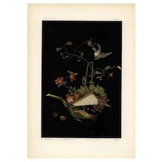 19th century,Japanese,lithograph print,Large folio, Bird and flower basket