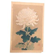 Original,Japanese,woodblock print,by Shodo Kawarazaki 1889-1973