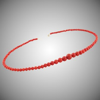 To 11mm Natural Old Coral necklace Gold