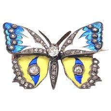 Gorgeous Art Nouveau Butterfly Enamel Brooch