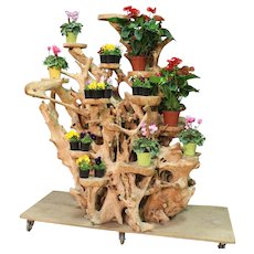 Planter In Indonesian Mangrove Root From 20th Century