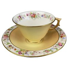 Royal Worcester Cup And Saucer Vintage  c1900.