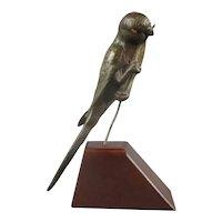 Bronze Parakeet On Wooden plinth Antique Victorian c1880