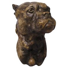 French Terracotta Bulldog Or Boxer Dog Bust Antique 19th Century.