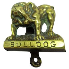 English Brass Bulldog Door Knocker Vintage 20th C.