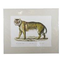 Karl-Joseph Brodtmann Tigress G2 Lithograph Print Published By Principia Press c1990