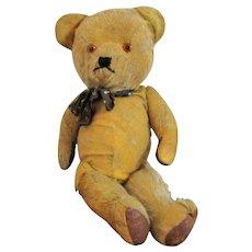 Well Loved Vintage Teddy Bear c1920s.
