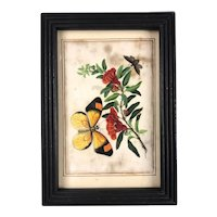 Framed Chinese Floral Watercolour on Rice Paper Antique c1820