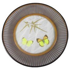 Bamboo Framed Glass Butterfly Tray Art Deco c1920