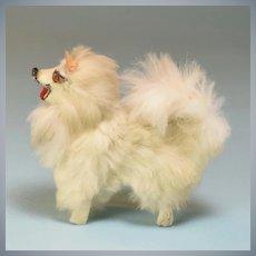 "Antique German Miniature Fur Spitz Salon Dog Early 1900s Large 1"" Scale"