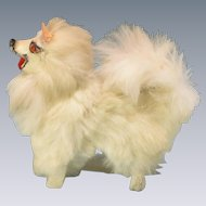 "Antique German Miniature Fur Spitz Salon Dog Early 1900s Large 1"" Scale"