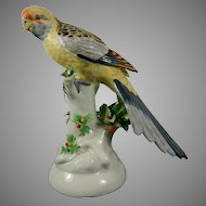 Old Hand Painted Mottahedeh Porcelain Figurine of a Parrot Italy