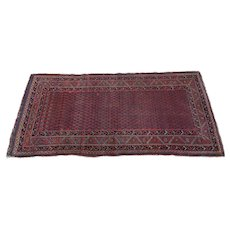 Early 20th C. Persian Red Ground Rug