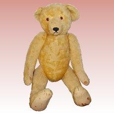 Antique Gigantic Ideal American Teddy Bear