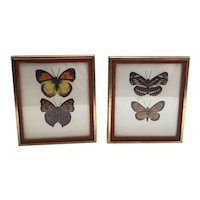 Bookends with Beautifully Painted Butterflies