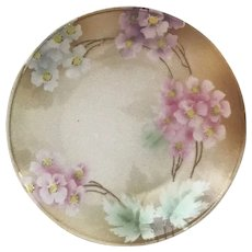 R.S. Germany Porcelain Cabinet Plate