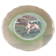 Clarice Cliff Royal Staffordshire English Spaniel Dog Plate
