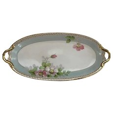 Hand Painted Nippon Celery Dish