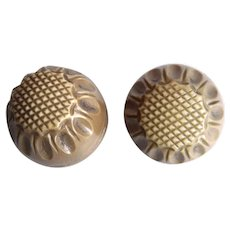 Pair of Vintage Brown Hollow Celluloid Buttons
