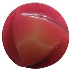 """Large Vintage Celluloid Button 1 11/16"""""""