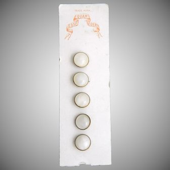 Vintage Clambroth Glass Waistcoat Buttons on Original Card