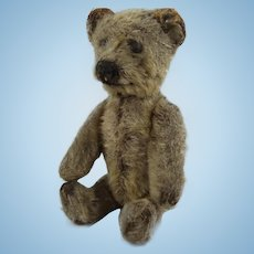 Sweet Early Miniature Schuco Bear, 5 Inches High, 1920s