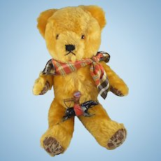 Jesse, A 1950s English Mohair Teddy Bear, 14 Inches