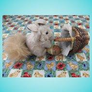 Vintage Miniature Fur Squirrel, 2 ½ Inches, with Wicker Basket & Wooden Acorn