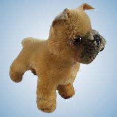 Adorable Steiff Boxer Dog 'Sarras', 4 Inches High