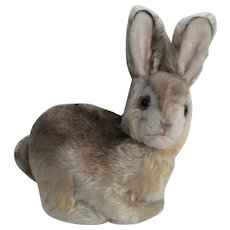 Cute Vintage Steiff 'Pummy' Mohair Rabbit