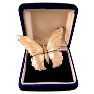 Beautifully Carved Mother of Pearl Butterfly