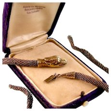 Victorian Snake Clasp, Gold On Silver