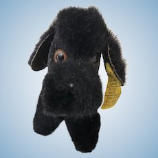 Small Doll Size Steiff Black Poodle