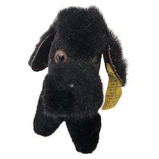 Steiff Black Poodle