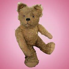 FADAP Long Mohair Teddy Bear, c. 1919