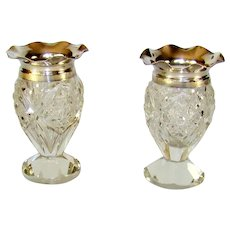 Pair Of Cut Glass And Silver Topped Specimen Vases, 1906.