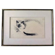 Charcoal Drawing of a Cat, Signed and Frame, 1970s-80s