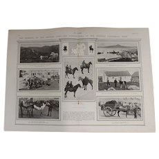 Original  Page 'The Horsing Of The British Army' - The Sphere Dec.1900