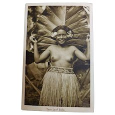 Taro Leaf Belle - Photograhic card