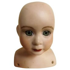 A Kohler German Made Porcelain Doll head & Shoulders