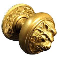 Victorian Lion Head Brass Door Pull