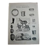 MOSEMAN'S  Illustrated Guide - Original Printed 2 Side Page - Circa 1892