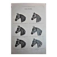 MOSEMAN'S  Illustrated Guide - Original Printed 2 Side Page - Circa 1892
