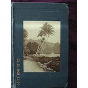 First Edition 1906 -  The Romance of The South Seas - Clement L. Wragge